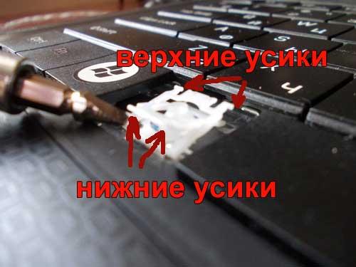 кнопка на клавиатуре ноутбука