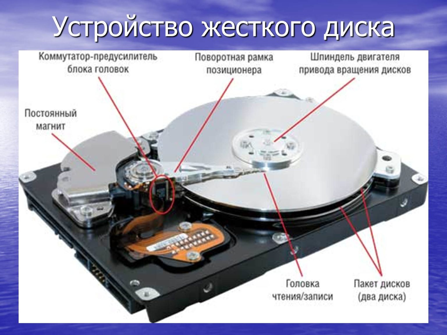 сколько места занимает жесткий диск